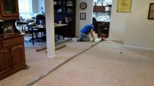 Anderson carpet cleaning pros