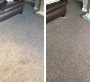 lavonia carpet cleaning
